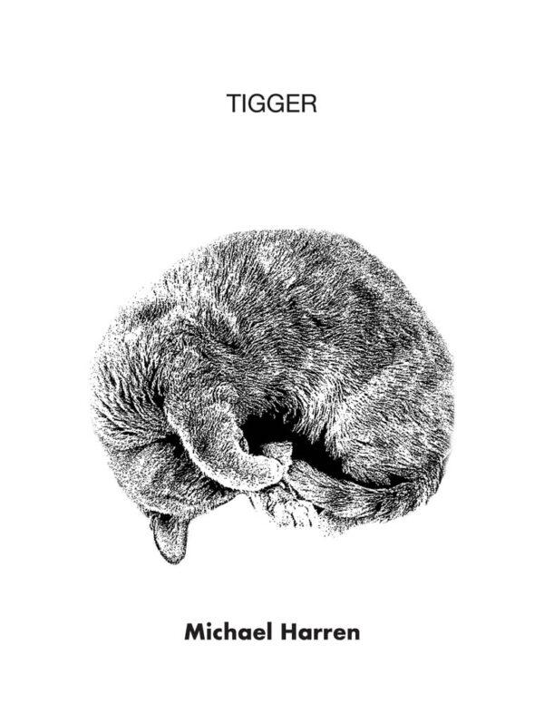 Tigger by Michael Harren