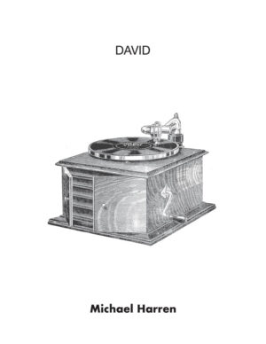 cover of David by Michael Harren